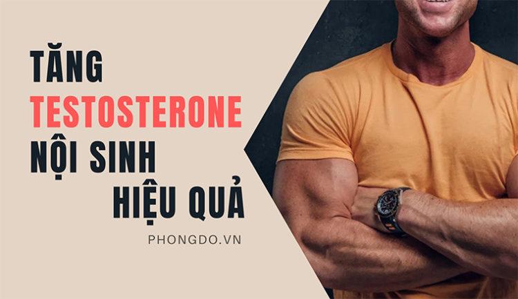 Hướng dẫn bạn cách tăng testosterone nội sinh vô cùng hiệu quả